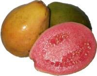 Φρεσκοκατεψυγμένη πούλπα (πολτος) φρούτων