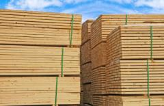 Μαλακή ξυλεία Πεύκης ή Ελάτης