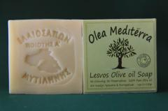 Olea Mediterra