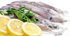 Kαλμάρια κατεψύγμενα απο τις Ελληνικές θαλασσες