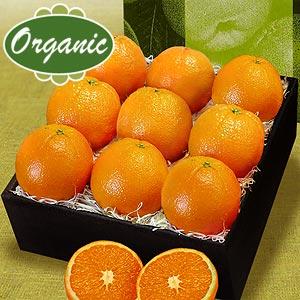 Βιολογικά πορτοκάλια Άριστης ποιότητας από Έλληνες