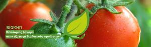 Βιολογικά Κηπευτικά και Φρουτα για εξαγωγες