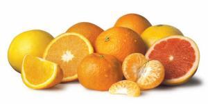 Βιολογικα Πορτοκάλια, Βιολογικα Μανταρίνια, Βιολογικα Ακτινίδια, Βιολογικα Λεμόνια και Βιολογικα Κηπευτικά