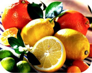 Βιολογικά Πορτοκάλια, Μανταρίνια, Ακτινίδια, Λεμόνια, Κηπευτικά για εξαγωγες