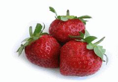 Φράουλες ειναι διαθέσιμες από Νοέμβριο μέχρι