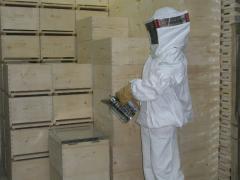 Ξύλινες κυψέλες για τους μελισσοκόμους από ξύλο
