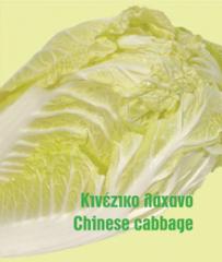 Κινέζικο λάχανο καλής ποιότητας από ελληνικό