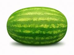 Greek Watermelons Krisby, Oval , Barrel 700+ tons.