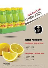 Lemon Juice «EUROFOOD» 250ml