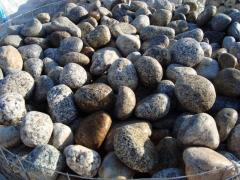 Grau Kieselsteine Natura