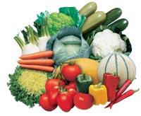 Σπόροι λαχανικών και φρούτων εξαιρετικής ποιότητας