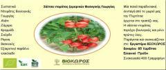 Σάλτσα Ντομάτας Ζυμαρικών 400 γραμμαρίων