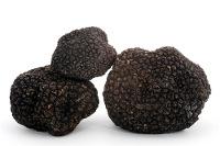 Τρούφα φρέσκια μαύρη, ανοιξιάτικη,φθινοπωρινή , άγρια καλοκαιρινή, χειμωνιάτικη 8σπορη.