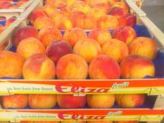 Ροδάκινα Peaches