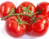 Ντομάτες εξαιρετικής ποιότητας