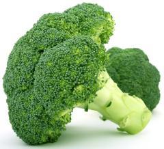 Μπρόκολα- Broccolis