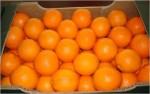 Πορτοκάλι  ελληνικής παραγωγής  εξαιρετικής