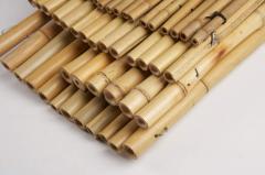 Μπαμπου Bamboo white&tonkin