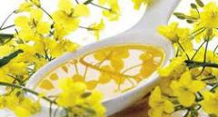 Rapeseed Oil (REFINED, CRUDE/REFINED)