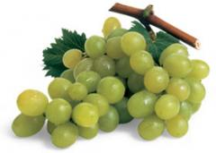 Grapes high quality from Greece for export