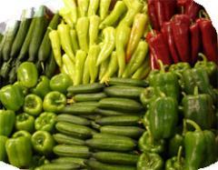 Πιπεριές από την Ελλαδα