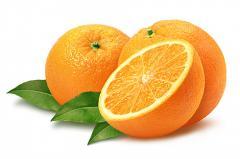 Πορτοκαλια ελληνικά / εισαγωγής (όλες οι