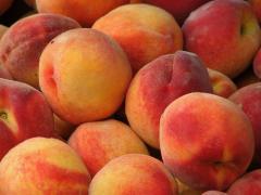 Peach, Nectarines,  Plums/ Ελληνικα ροδακινιά και