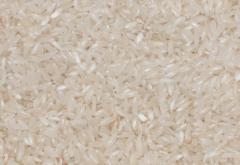 Ρύζια Γλασσέ