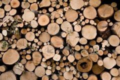 Firewood high quality