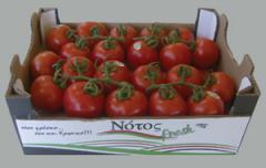 Φρέσκες ντομάτες αναγνωρίσιμης ποιότητος