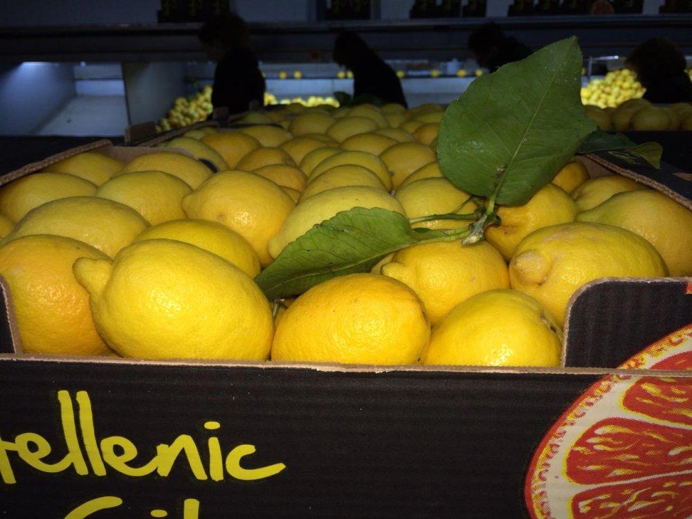 greek_super_aroma_lemons