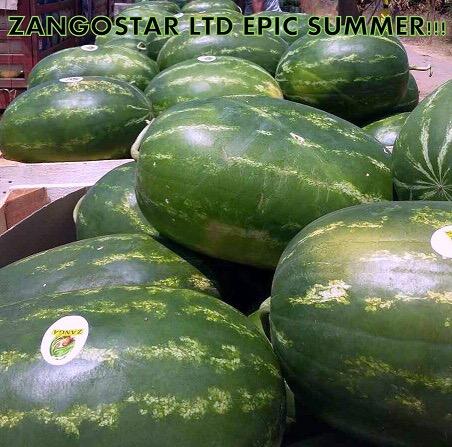 greek-watermelons-samantha-dumara