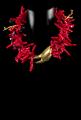 Γυναικεία Κοσμήματα καλής ποιότητας