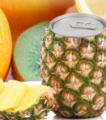 Κονσερβοποιημένα φρούτα και λαχανικά