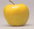 Ελληνικά μήλα golden delicious υπέροχης ποιοτητάς