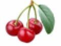 Κεράσια ποτ παράγονται σε ορεινές και ημιορεινές περιοχές της Πέλλας.