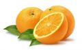 Πορτοκάλια από την Πελοπόννησο