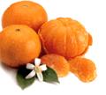 Κλημεντίνες και Πορτοκάλια