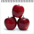 Ποικιλία Μήλων Starkin