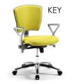 Καθίσματα Γραφείου, Καρέκλες ανατομικές