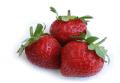 Φράουλες ειναι διαθέσιμες από Νοέμβριο μέχρι Ιούνιο.