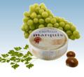 Αρωματικό λευκό mould τυρί Castello® Marquis