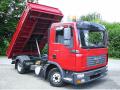 Εμπορία μεγάλων φορτηγών και ελαφρών  επαγγελματικών   αυτοκίνητων