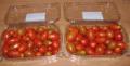 Ντομάτα τύπου «βελανίδι» Ντομάτα τύπου «βελανίδι» καλής ποιότητας