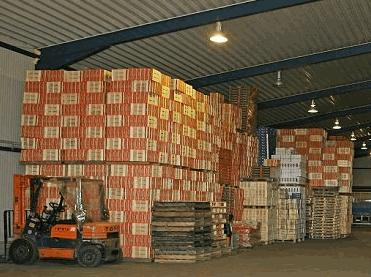 Τυποποίηση και συσκευασία φρούτων από παραγωγό