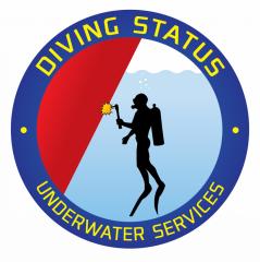 In-water survey